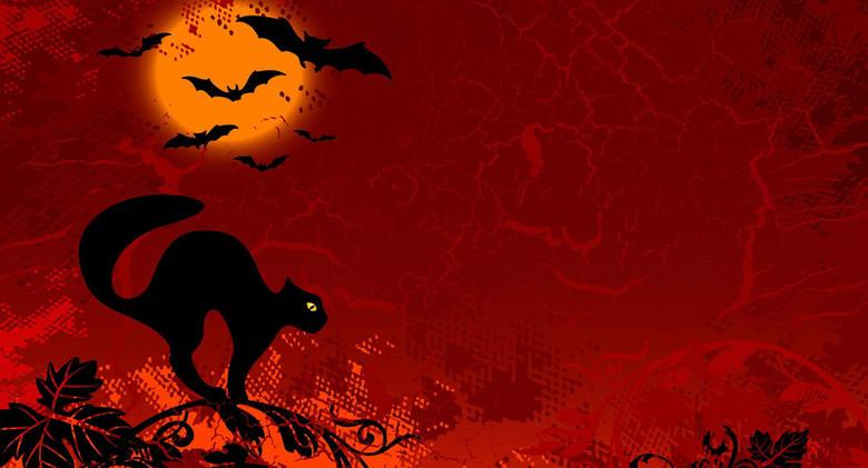 万圣节蝙蝠猫咪红色天空